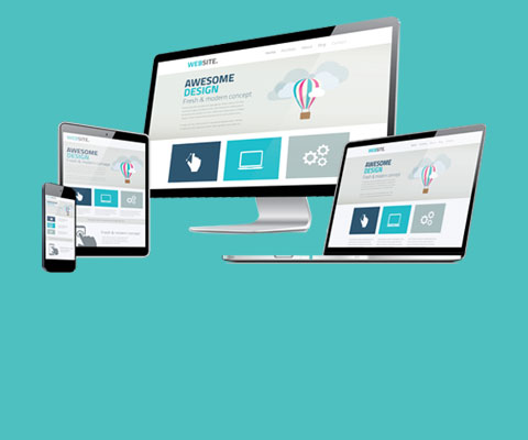Sunshine Coast Web Designers